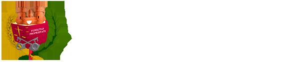 gesaragon_logo-blanco